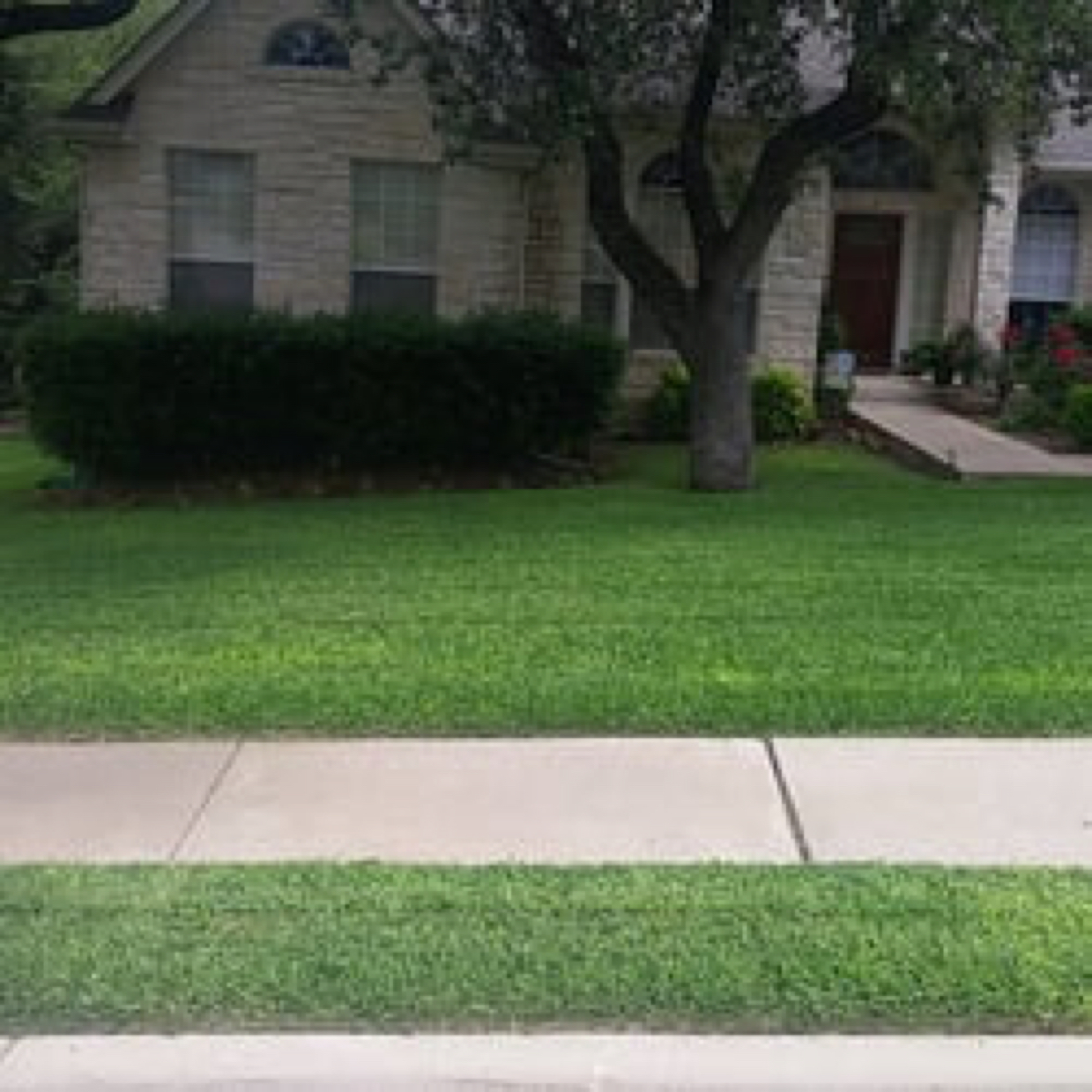 Veteran Lawn And Landscaping