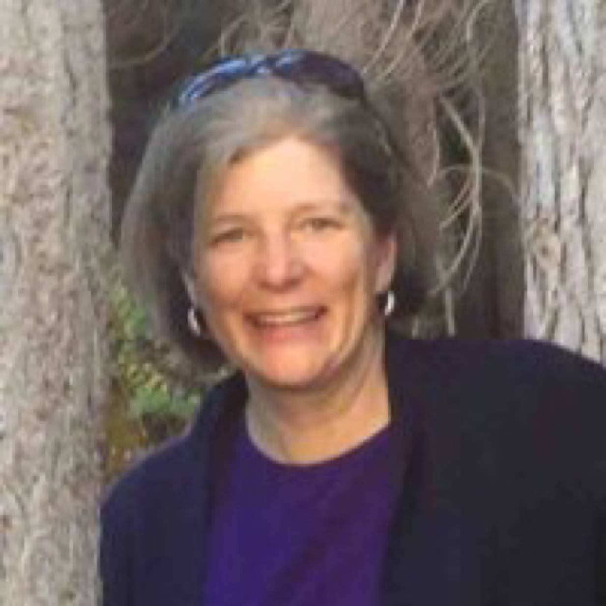Denise Broadwater Counseling And Therapy