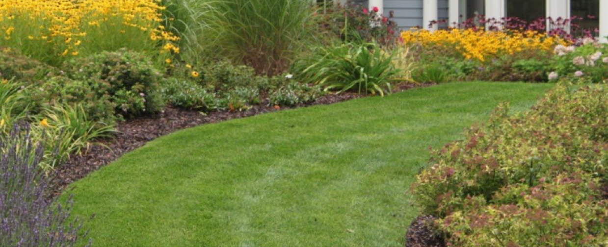 Geo Lawn Care And Landscaping