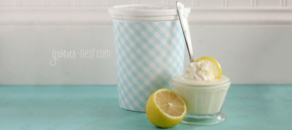 Lemon Yogurt Recipe- Family Size! | Gwen's Nest