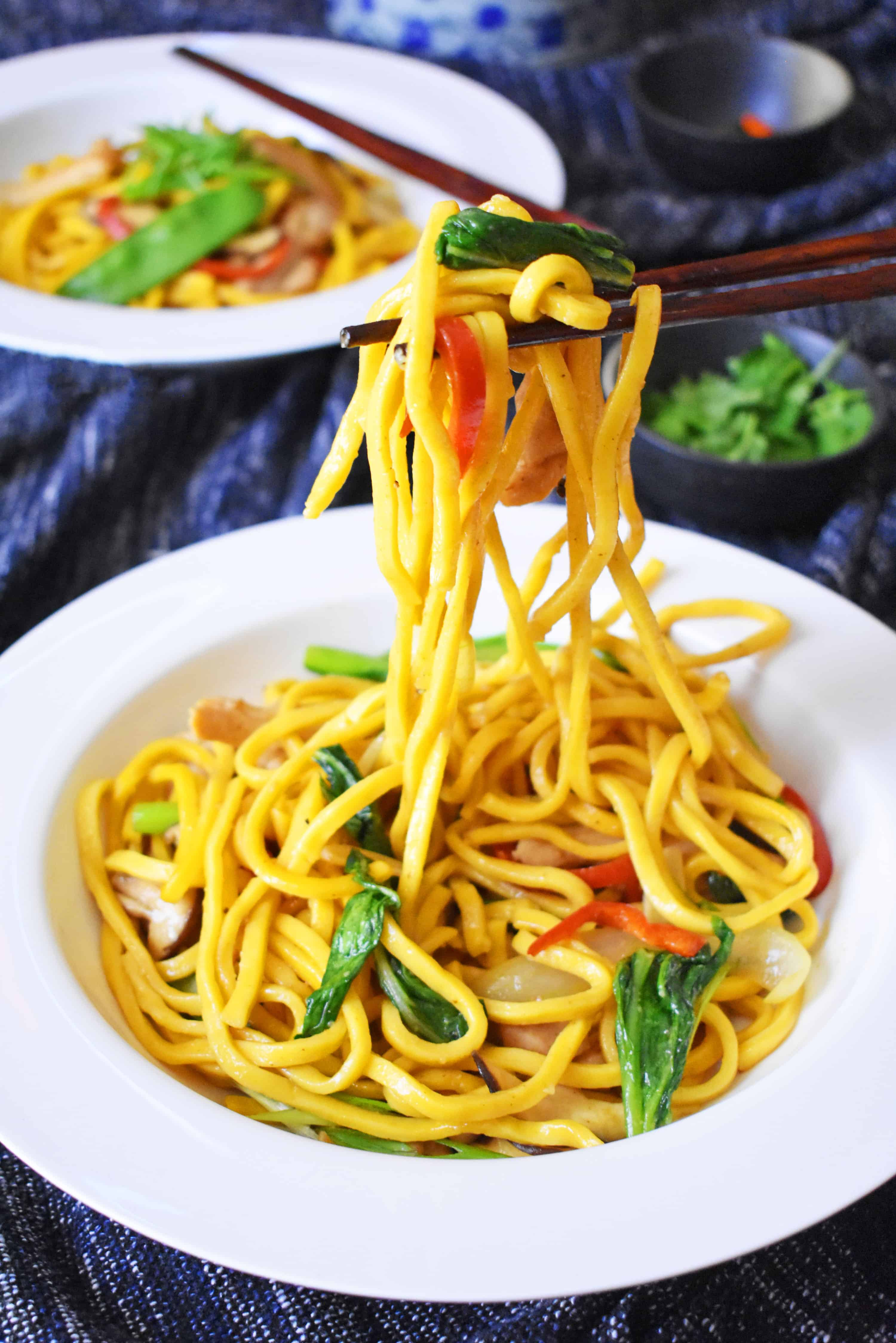 Easy Chicken and Hokkien Noodle Stir Fry - Scruff & Steph
