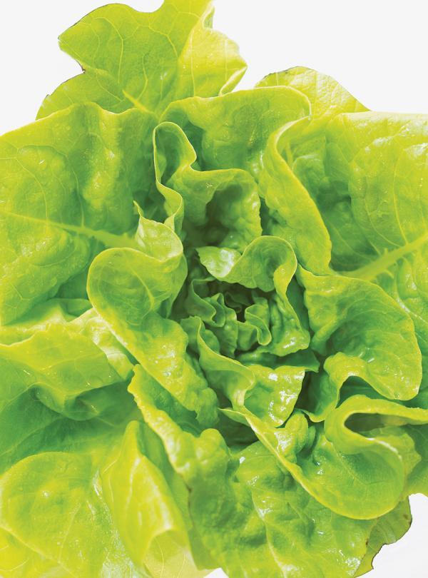 Salade De Coeurs De Palmier Et De Coeurs D'artichauts | Ricardo