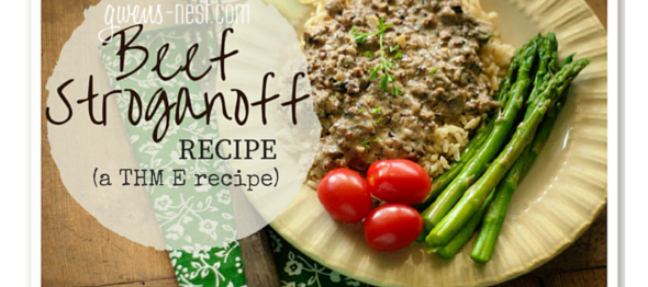 Beef Stroganoff Recipe THM E | Gwen's Nest