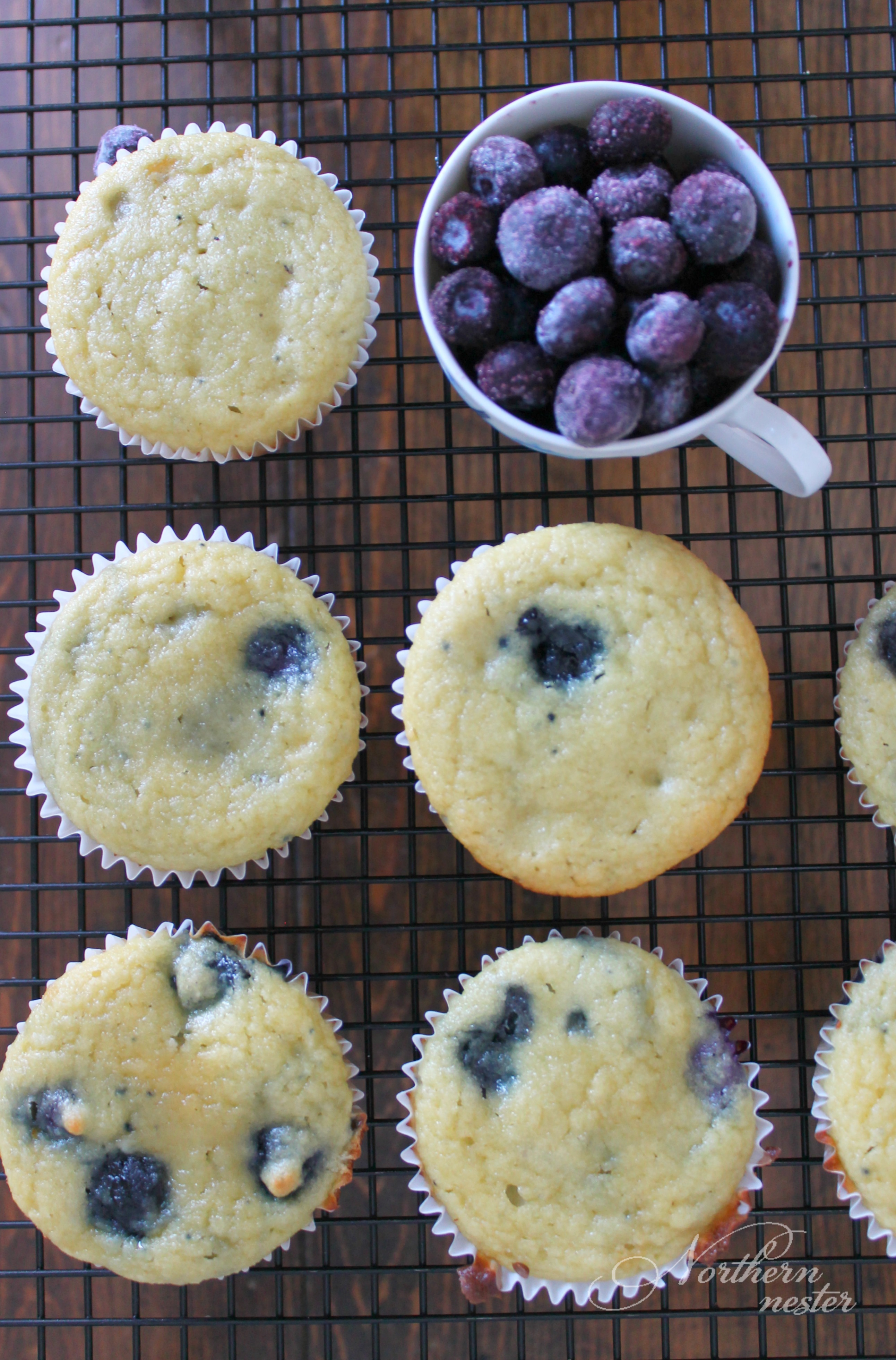 Blueberry Cupcakes | Thm: S - Northern Nester