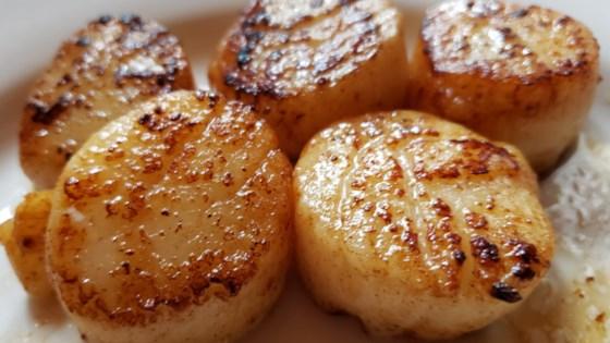 Garlic Lemon Scallops Recipe